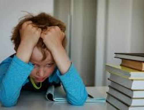 Παπαγαλία στο σχολείο: κι όμως το πρόβλημα είναι αλλού
